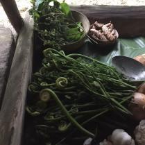 Rabo de Mono - casi como Kale